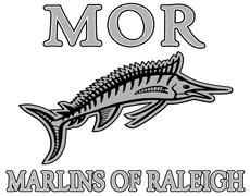 Marlins of Raleigh Competitive Swim Lessons