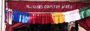 MacNair's Country Acres Horseback Riding Lessons