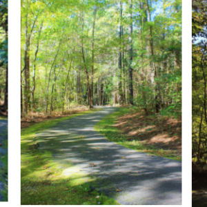 Knightdale Environmental Park and Trails